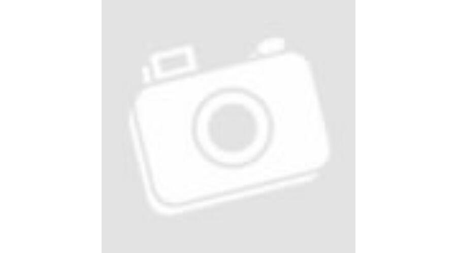 DTG Digital M2 Ipari Pólónyomtató 383be11211